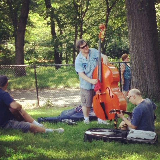 sheep meadow musicians