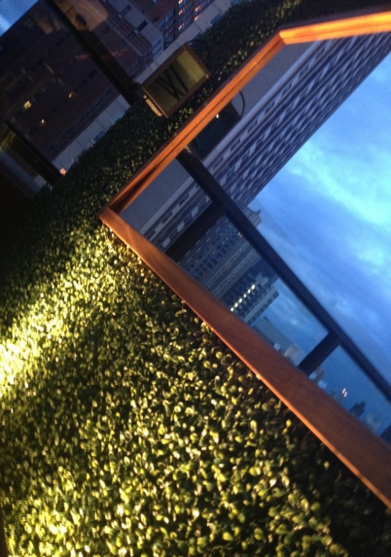 empire hotel rooftop bar new york ambiance